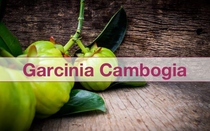 Garcinia für Gewichtsverlust Bewertungen